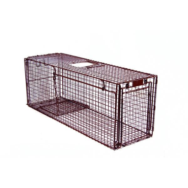 Tru-Catch Traps - 36D Classic Deluxe-Raccoon Trap - 1/4